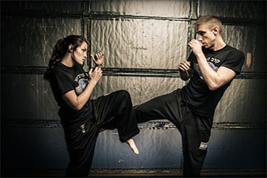 Phoenix mixed martial arts